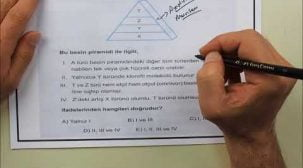 YKS Biyoloji Örnek Sorularla Sınava Hazırlık